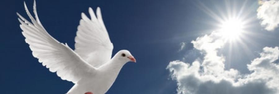 """Presentatie """"Overstroom ons met uw vrede"""""""